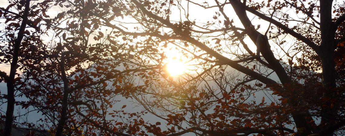 Marzola Sunset